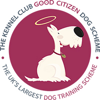 Good Citizens Awards – Puppy Foundation Passed