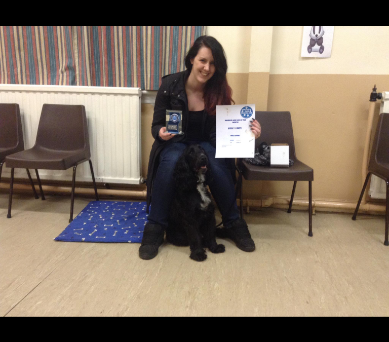 Dog & Handler of the Month – January